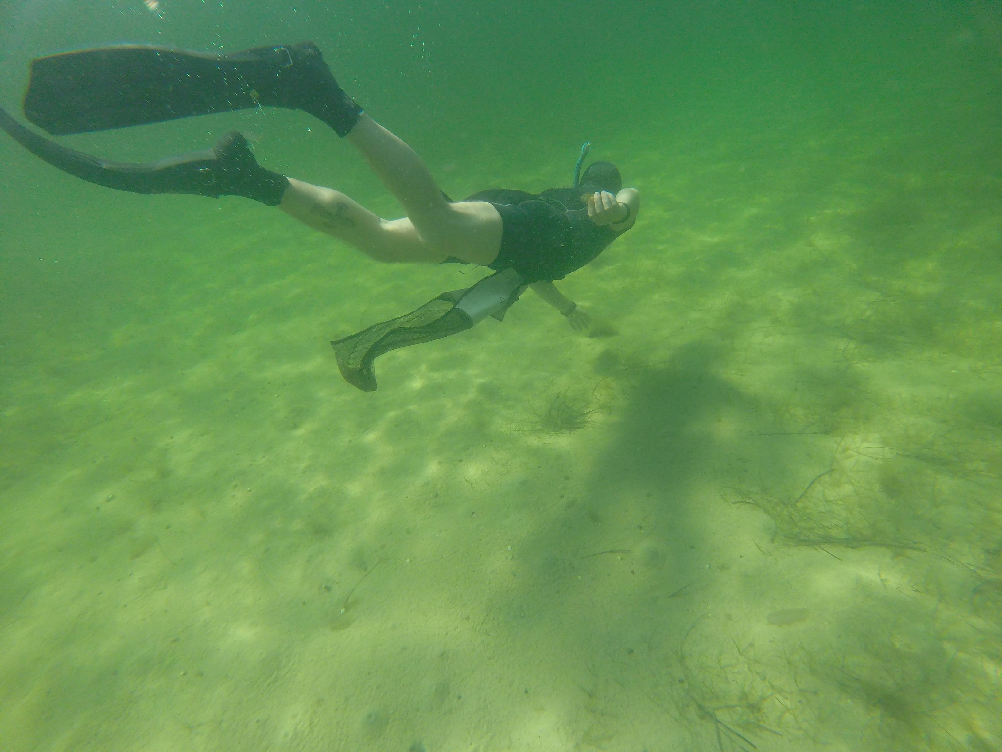 Подводная охота - Обзорное описание